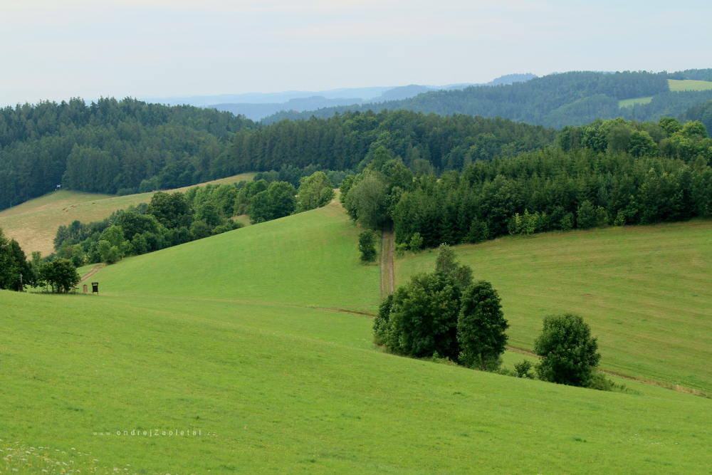 Fotografie The Hill Country, na fotce: mountains, trees, fields, path, autor: Ondřej Zapletal