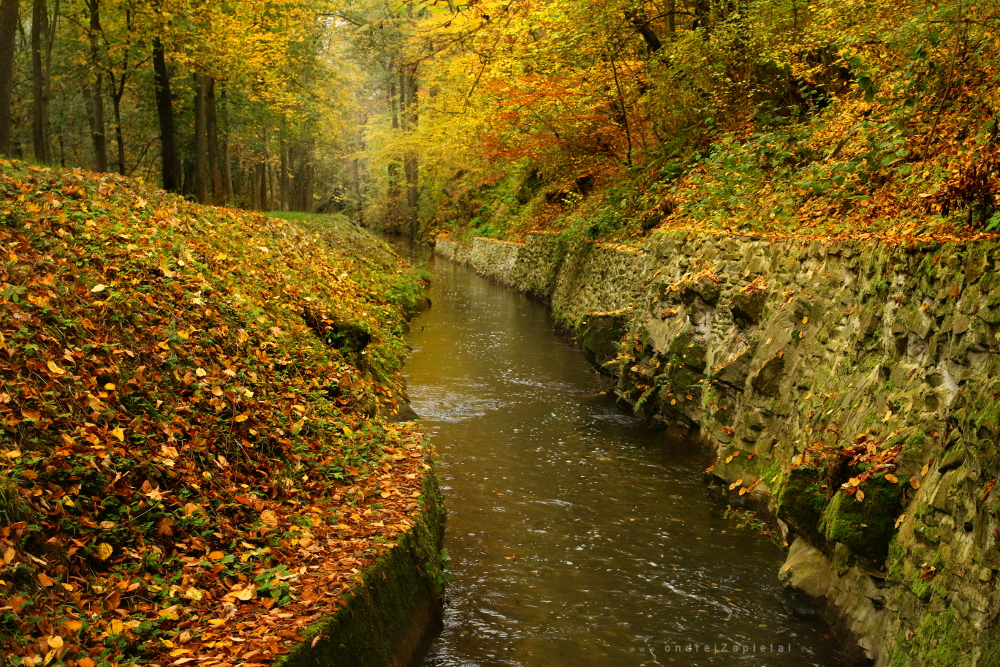 Fotografie Millrace through Colors, na fotce: autumn, forest, water, nature, autor: Ondřej Zapletal